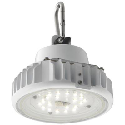 岩崎電気 シーリングライト スポットライト LED低温用 EQCL1003RSA9 1個 (直送品)