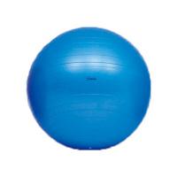 トーエイライト ボディーボール65(最大時直径65cm) H7262 (取寄品)