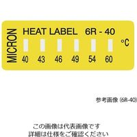 ミクロン ヒートラベル(不可逆性) 6R-199 1箱(10枚) 3-8756-06 (直送品)
