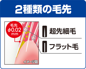 2種類の毛先で歯面と歯周ポケットを同時にケア