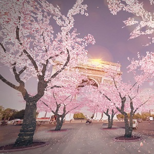 LUX SAKURA DREAM