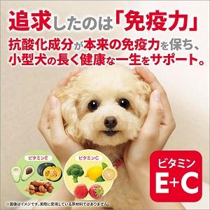 長生きする小型犬の健康維持にたっぷりの抗酸化成分