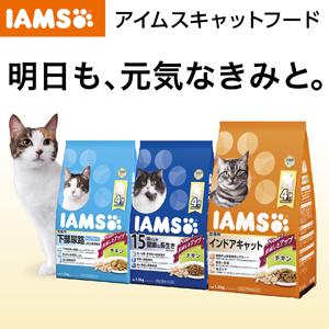 IamsCat_1.jpg