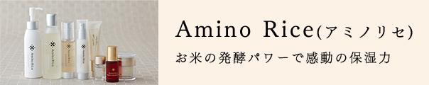 アミノリセ