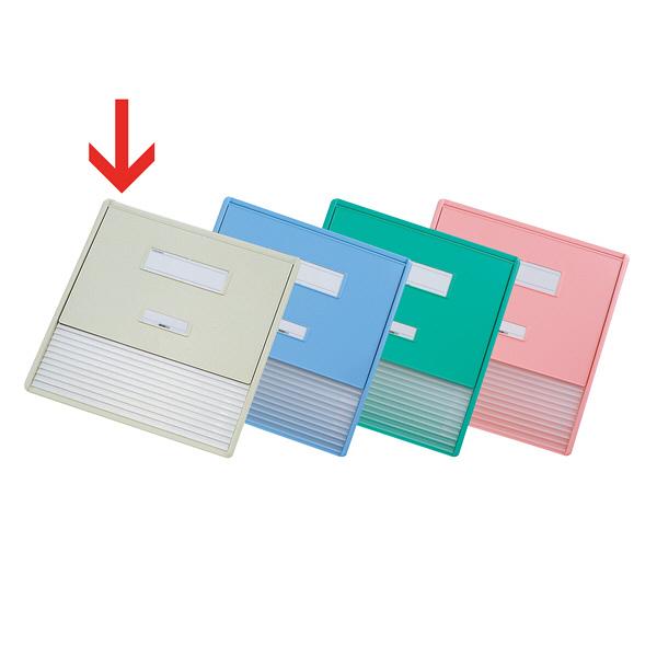 リヒトラブ カードインデックス(カーデックス) A3 ポケット数/11 オフホワイト HC113C-1 (直送品)