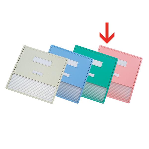 リヒトラブ カードインデックス(カーデックス) A3 ポケット数/11 ピンク HC113C-4 (直送品)