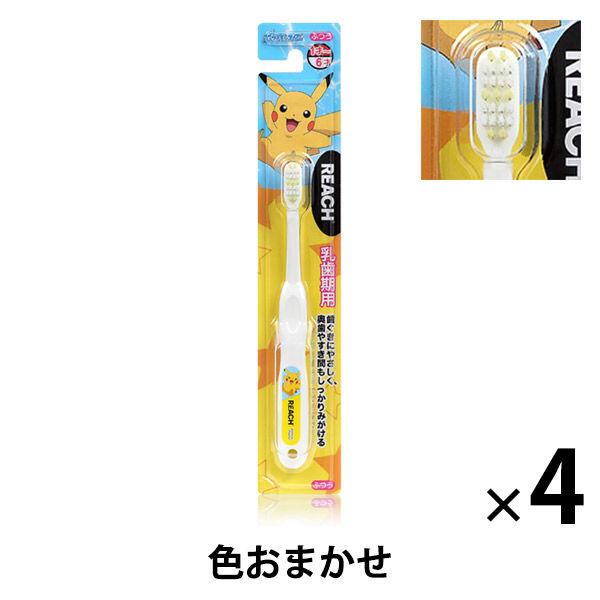 リーチ乳歯期用ポケモン 4本セット
