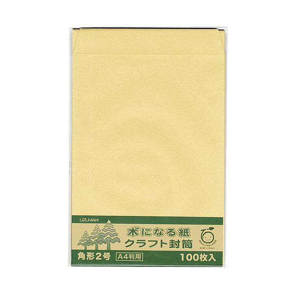 菅公工業 間伐紙クラフト封筒 シ126 角2 100枚 郵便番号枠なし (直送品)