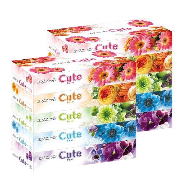 エリエールCute160組(5箱入)×2