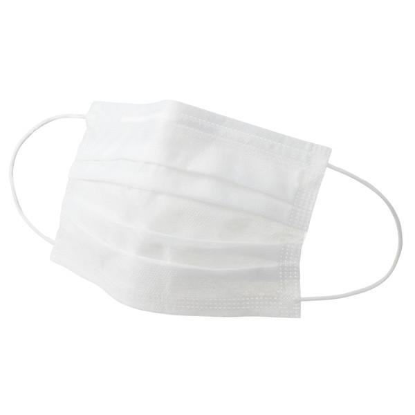 アスクル 「現場のチカラ」 2PLYマスク平紐タイプ 1箱(100枚入)