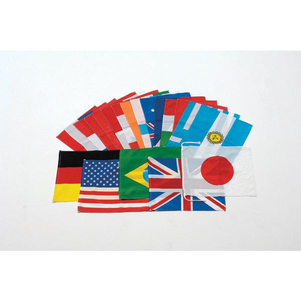 トーエイライト アクリル万国旗 20カ国 B6337 1セット(20枚入) (取寄品)