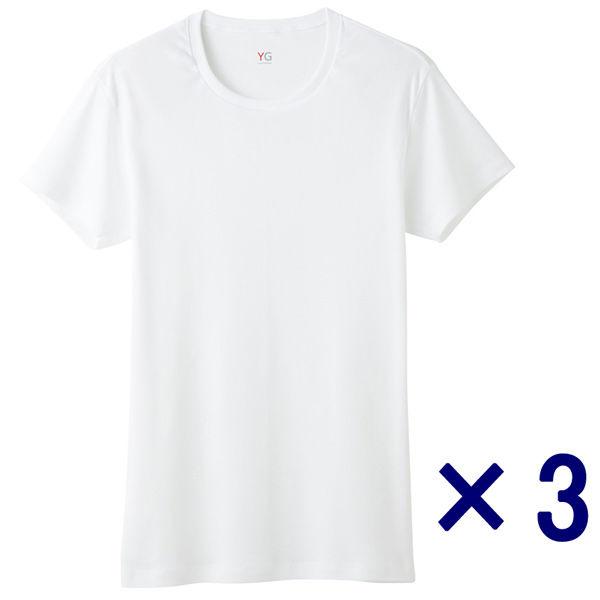 グンゼ男肌着YG3Lホワイトクルーネック