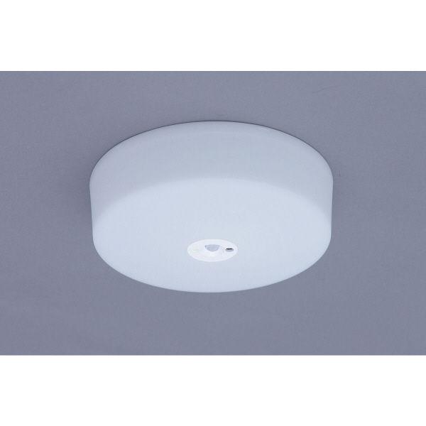 LED小型シーリング昼白色 センサー付