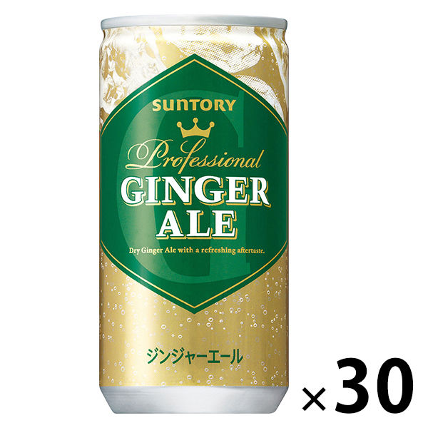 ジンジャーエール 200ml 30缶