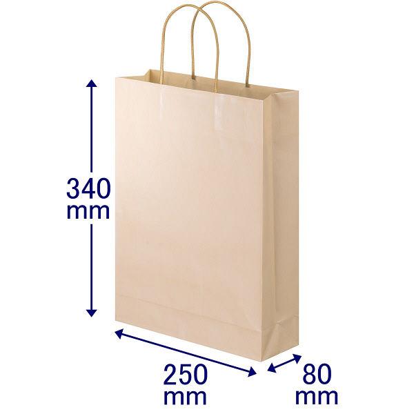 丸紐 手提げ紙袋 L 10枚