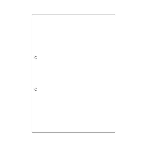 ヒサゴ A4白紙2穴 大入 FSC2001Z 1箱(1200シート入) (取寄品)