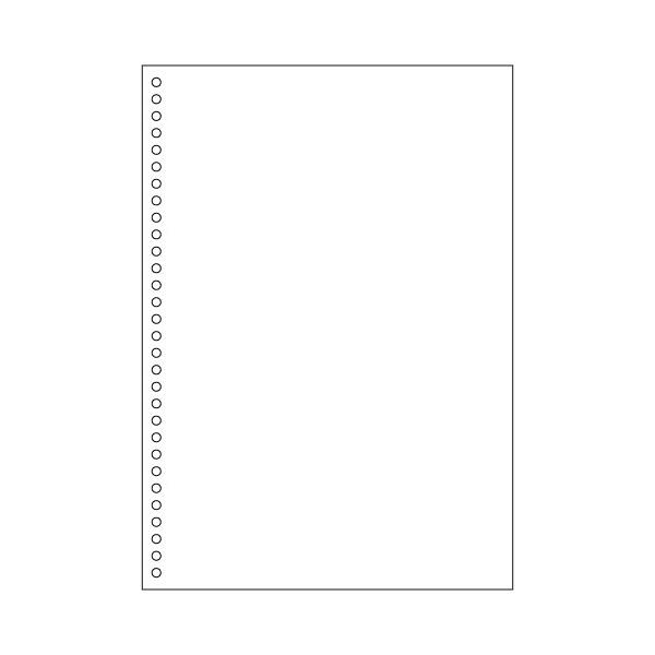 ヒサゴ A4白紙30穴 大入 FSC2049Z 1箱(1200シート入) (取寄品)
