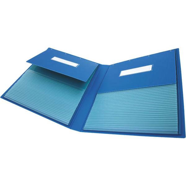 ケルン カーデックスミニ ブックタイプ ポケット数50 KD-316 1箱(1冊入) (直送品)