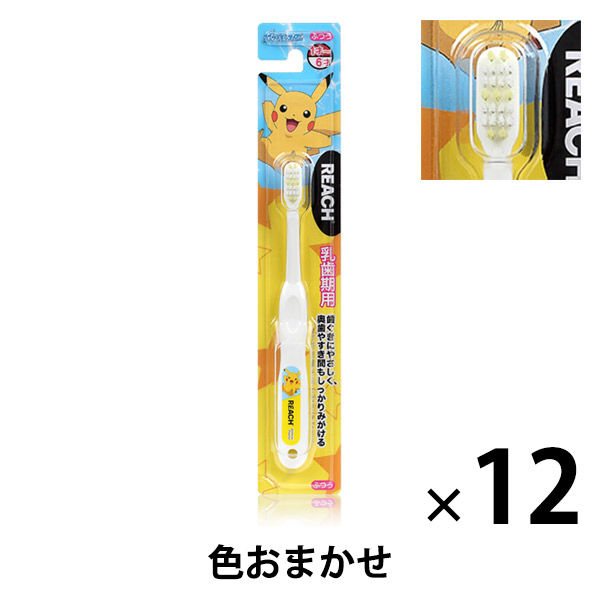 リーチキッズ乳歯期用 ポケモン 12本