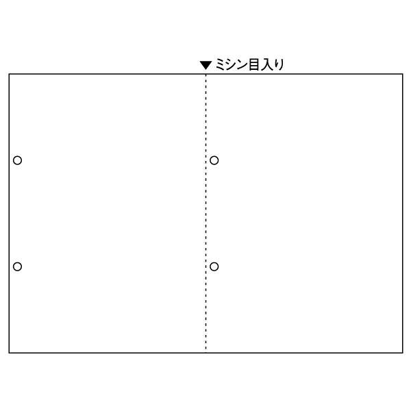 ヒサゴ A4白紙2面ヨコ4穴(源泉徴収票用) BP2069 1パック(100枚入) (取寄品)