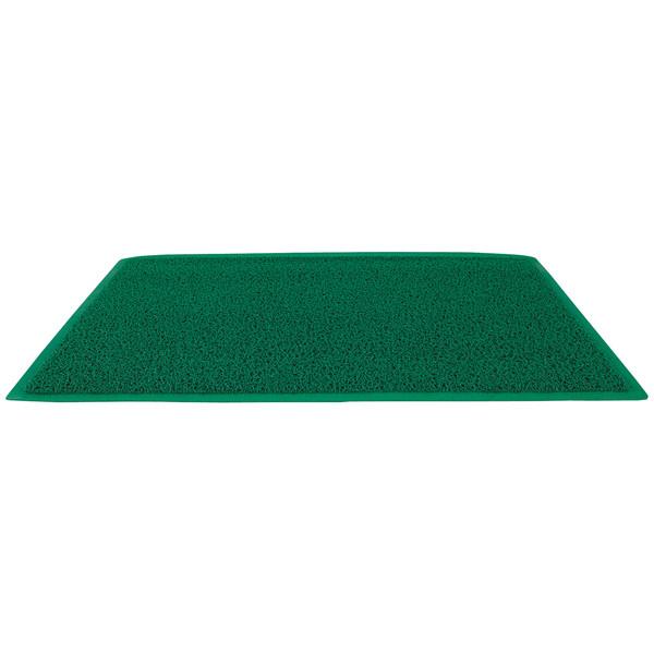 アール・エフ・ヤマカワ 玄関マット 600×900 グリーン