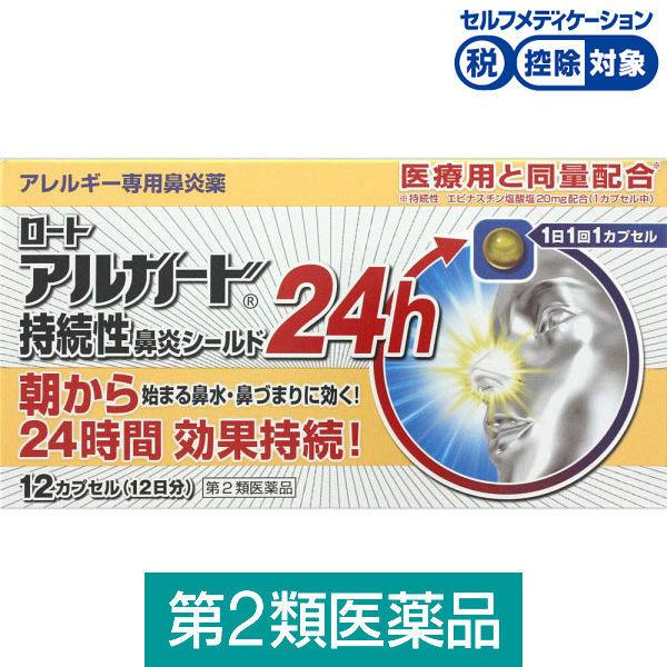 アルガード持続性鼻炎シールド24h12C