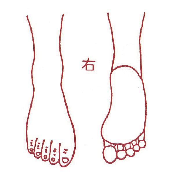 アスクル】サンビー 人体略図ゴム印 右足31 『右足』 JING-31 (取寄品 ...