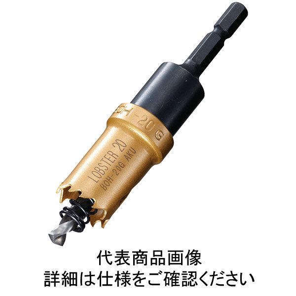 ロブテックス エビ バイメタルホルソー 22mm 六角軸 BOH22G 1本 335ー4563 (直送品)