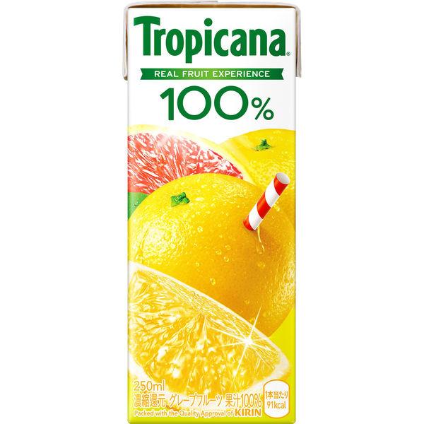 トロピカーナグレープフルーツ 24本