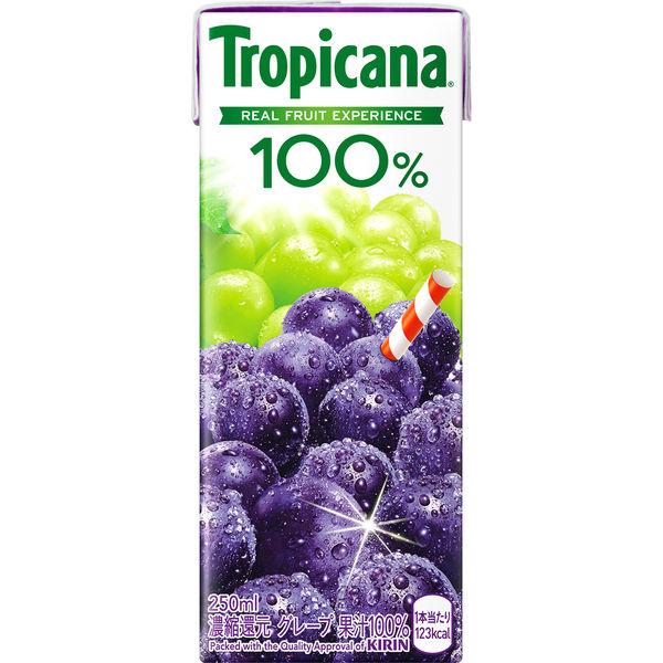 トロピカーナ100%グレープ 250ml