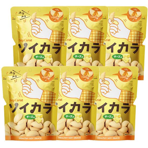 大塚製薬 ソイカラ チーズ味 6袋