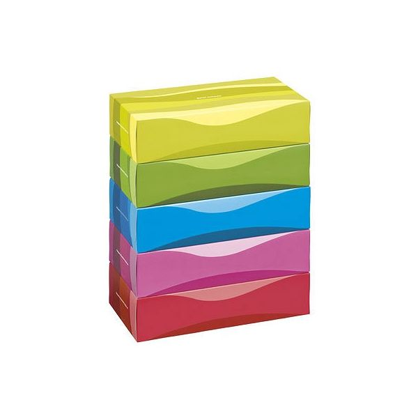 スマートコンパクトビビッド150組×2