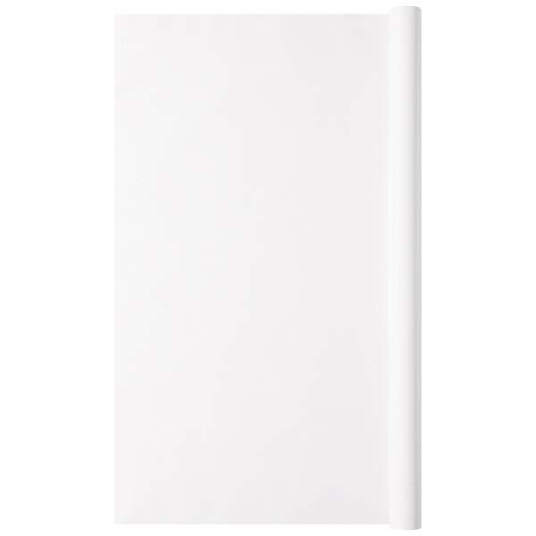 アピカ 方眼模造紙 プルタイプ 白 XP10W 1箱(10枚入)