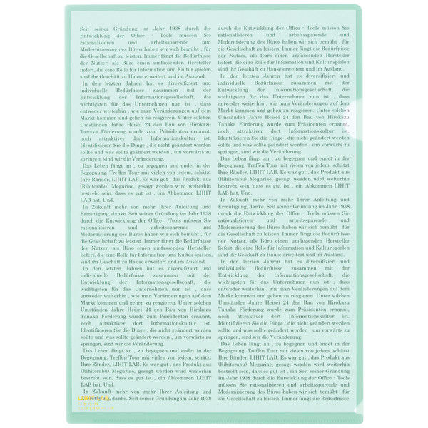 リヒトラブ カラークリヤーホルダー クリスタルグリーン A4タテ F78-19 1箱(50枚)