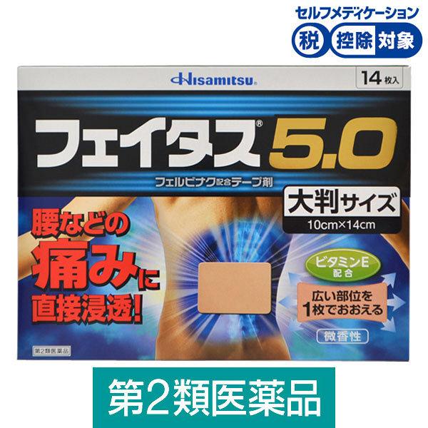 フェイタス5.0大判サイズ 14枚