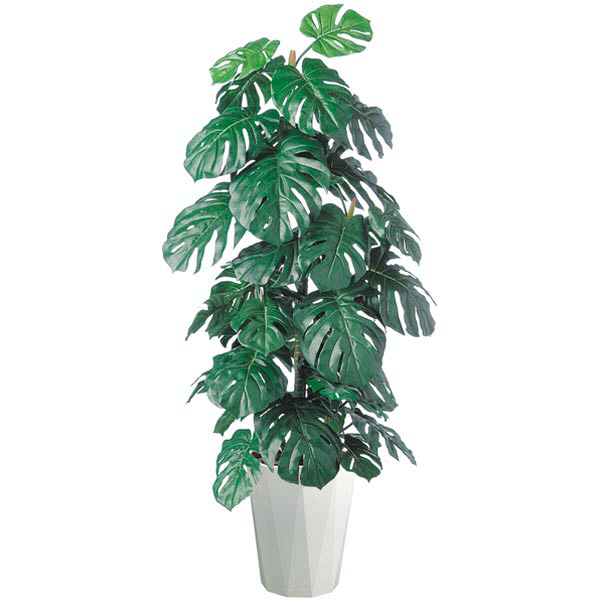 アイコム 人工樹木 モンステラ 1.5m 1鉢 (取寄品)