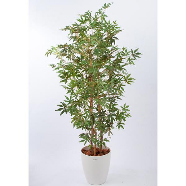 アイコム 人工樹木 メープルツリー 1.8m 1鉢 (取寄品)