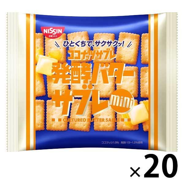 ココナッツサブレミニ<発酵バター>20個