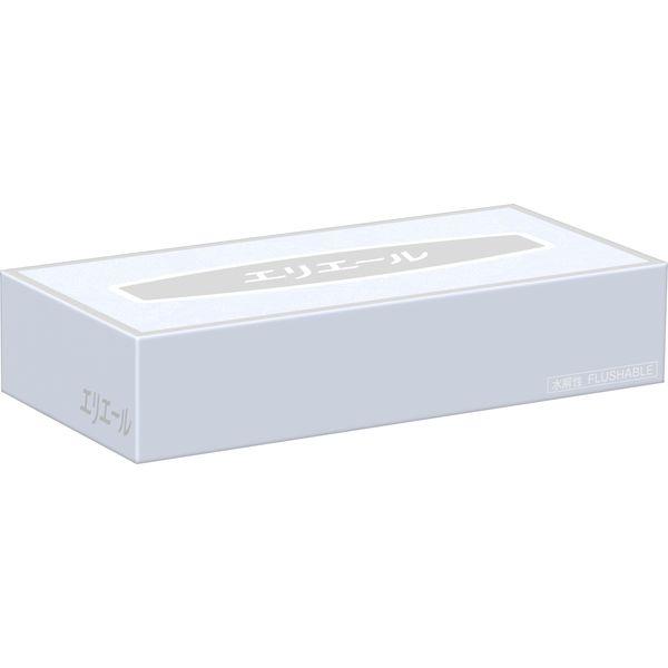 大王製紙 エリエール ティシュー100W(水解性) 1箱(60カートン)
