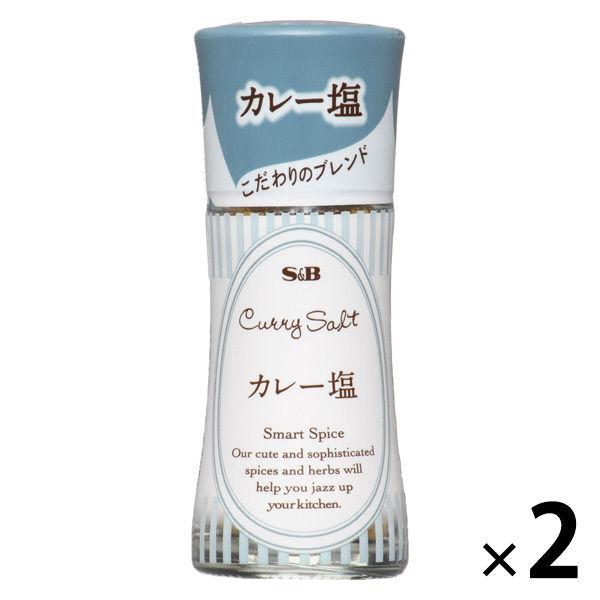 スマートスパイス カレー塩 2本