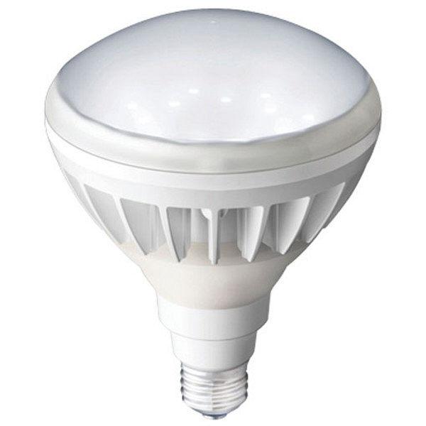 レディオック LEDアイランプ LDR33N-H/E39W750 岩崎電気 (直送品)