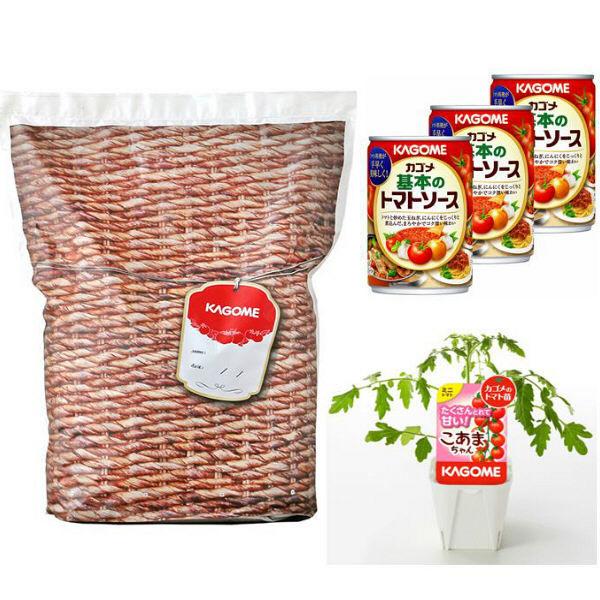 【5月届】トマト栽培キット土有り1キット