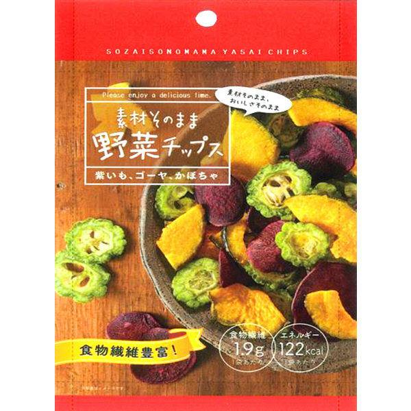 素材そのまま 野菜チップス 1袋