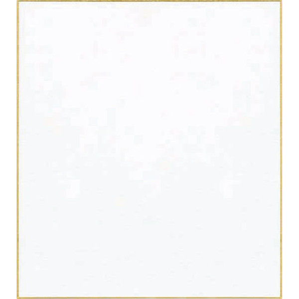 菅公工業 立てかけ色紙 白 ケ139 5枚 (直送品)