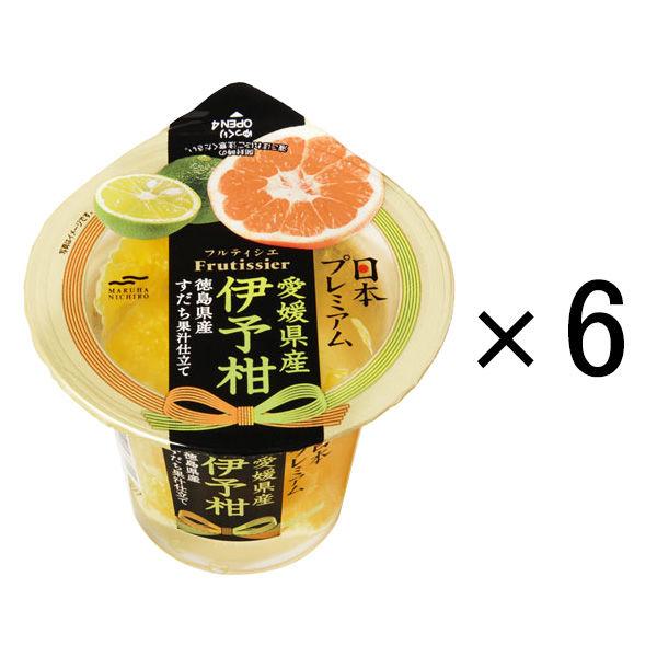 日本プレミアム 愛媛県産伊予柑 6個