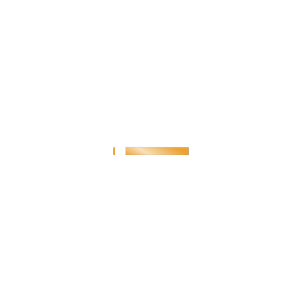 ナカニシ セラファイバー砥石 (2本入) #300 60722 1パック(2本) 833-8204(直送品)
