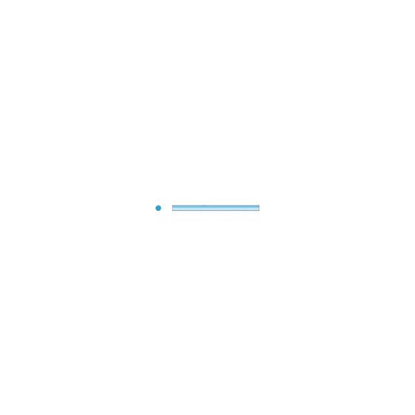 ナカニシ セラファイバー砥石チップ (2本入) 63105 1パック(2本) 833-8267(直送品)