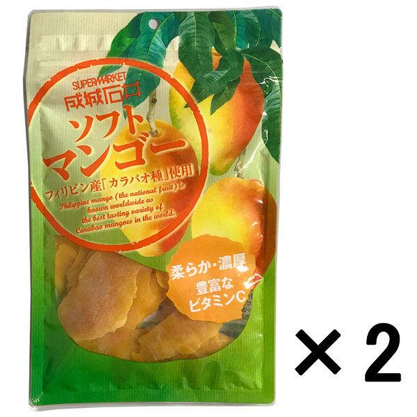 フィリピン産ソフトマンゴー 65g 2袋
