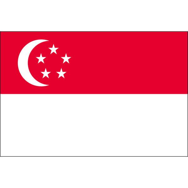 アスクル】東京製旗 シンガポール国旗(卓上旗16×24cm) 406326 1枚 ...