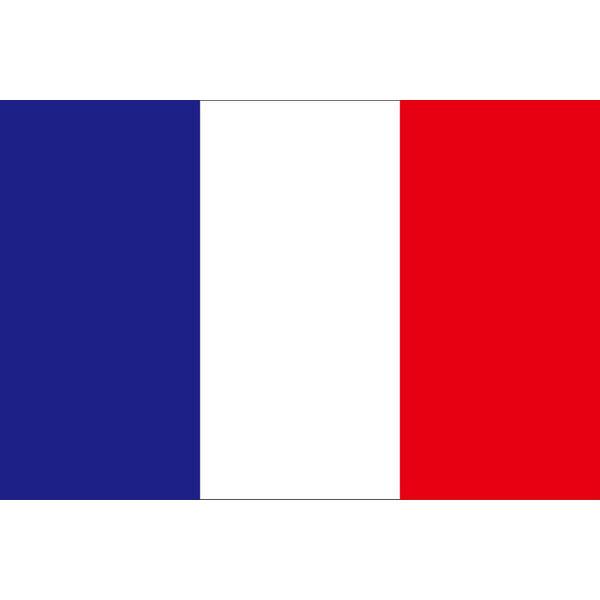 アスクル】東京製旗 フランス国...